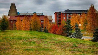 Погода в Финляндии в ноябре