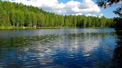 Погода в Финляндии в июле